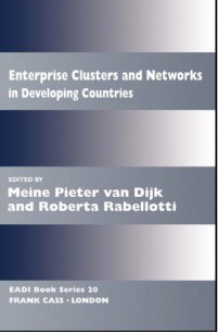 Enterprise clusters and networks as sources of cooperation and technology diffusion for small firms in developing countries