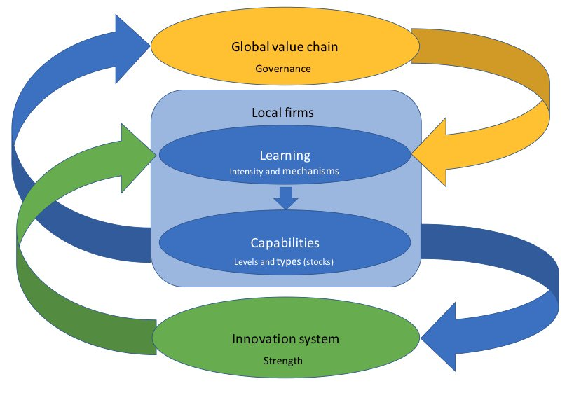 Innovation Trajectories in Developing Countries: